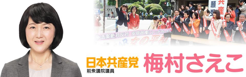 梅村さえこ(日本共産党前衆議院議員)-北関東ブロック(埼玉・栃木・群馬・茨城)比例代表選出